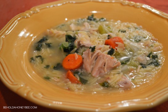 turkey and orzo soup 2